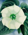 Georgia O'Keeffe Shatters Auction Record for a Female Artist