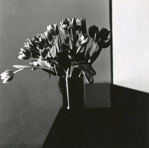 """Tulip, 1977"" shows the photographer's signature style."